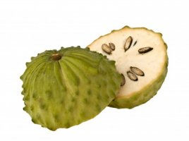 Graviola - Annona muricata
