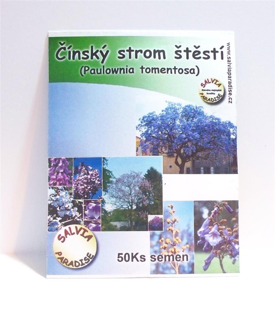 Čínský strom štěstí Paulownia semena 50 Ks