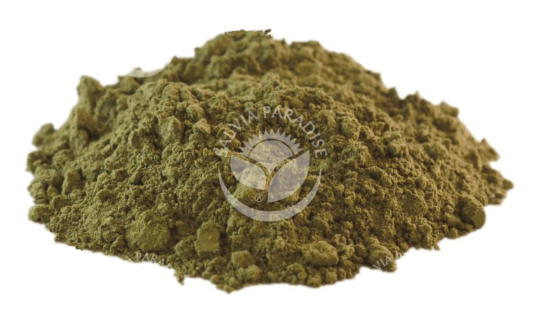 Jiaogulan matcha Tahiland mletý surovina
