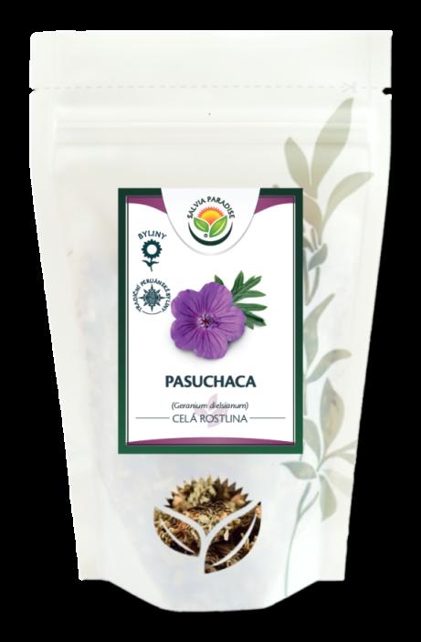 Paasuchaca