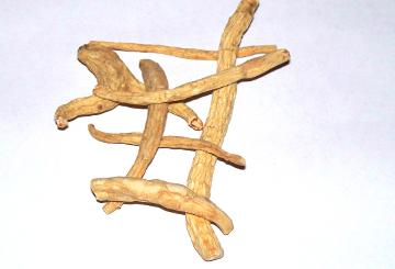 Ženšen pravý - kořen celý 1 kg
