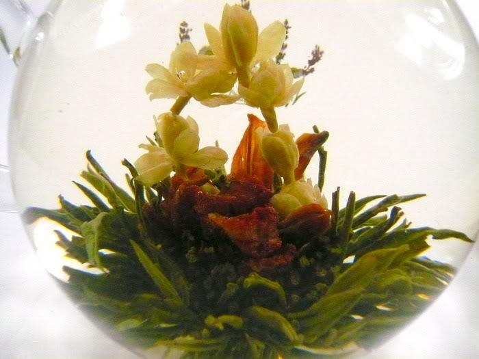 Nebeská brána - kvetoucí čaj