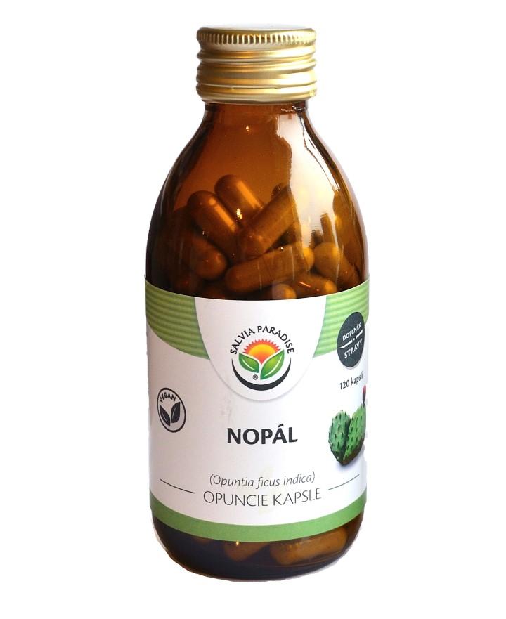Nopál - Opuncie kapsle