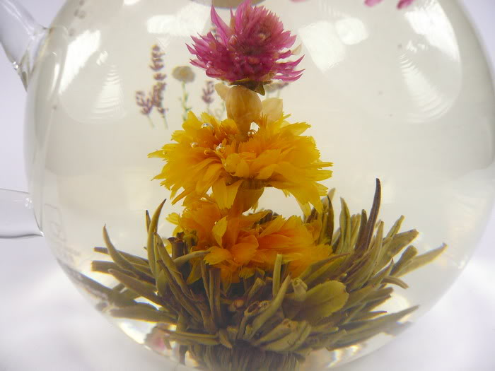 Oáza východu - kvetoucí čaj