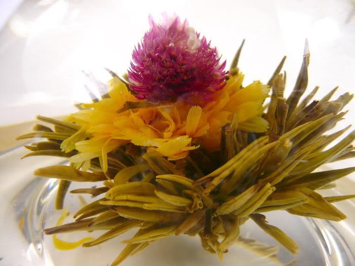 Touha - kvetoucí čaj